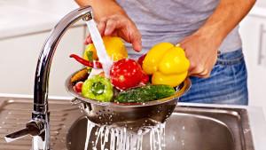 Food Safety Level 1, Basic Food Safety